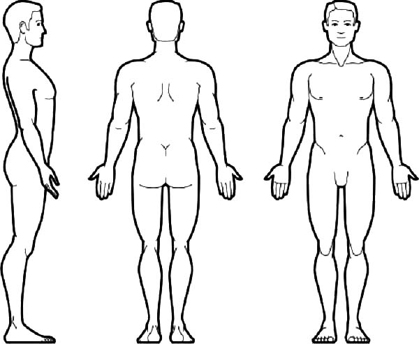 Large Human Body Outline Boy and Girl  twinklcouk
